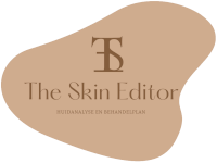 The Skin Editor